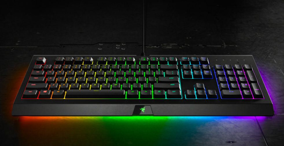 Razer Cynosa Chroma Pro Review Updated Now