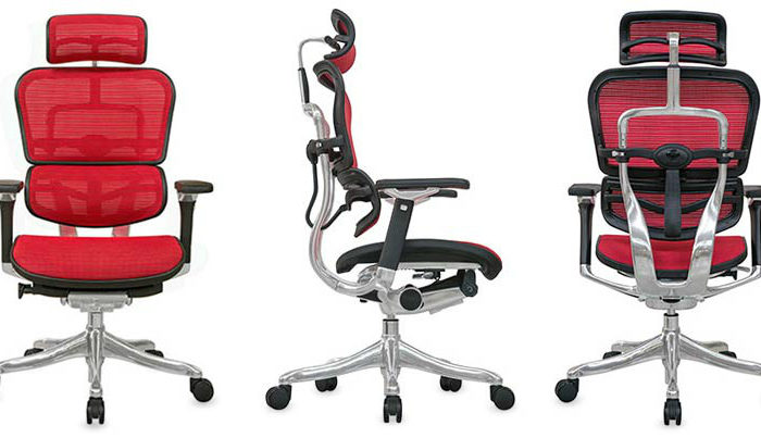 Raynor Ergohuman Chair Review