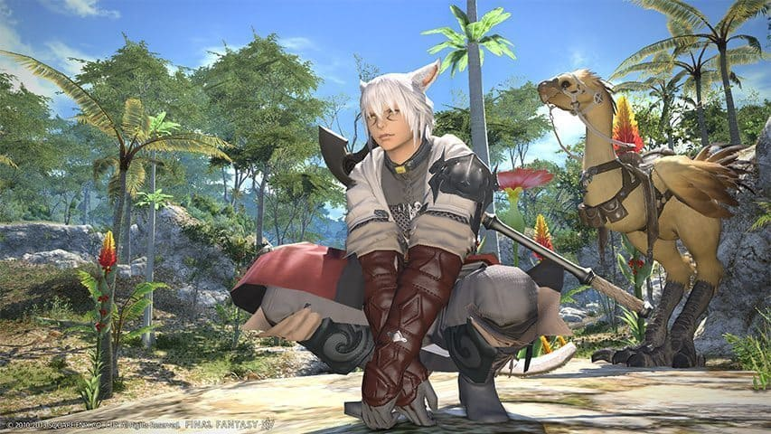 How Big is the Development Team for Final Fantasy XIV?