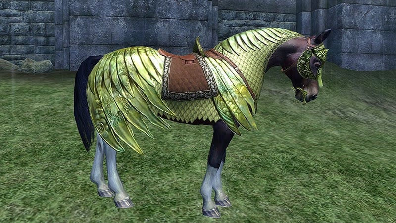 Horse that started it all